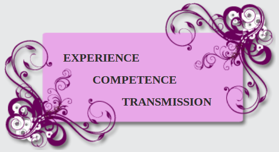 Experience-competence-transmission-GCMODE